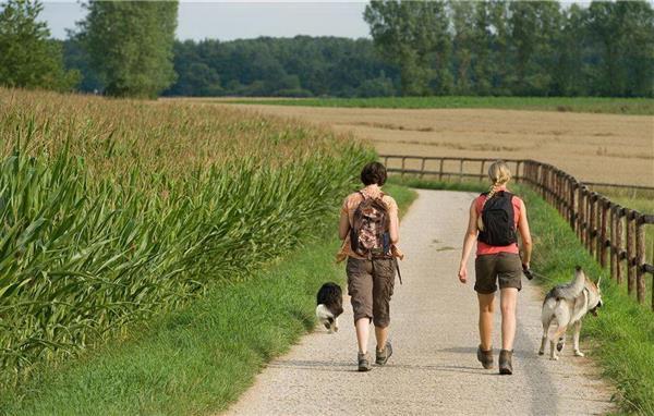 三四线城市如何搞休闲农业?